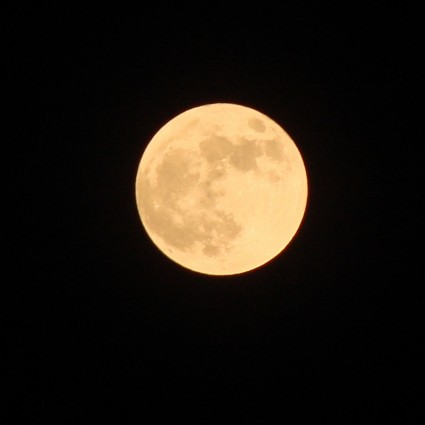 the_full_moon_two_204513